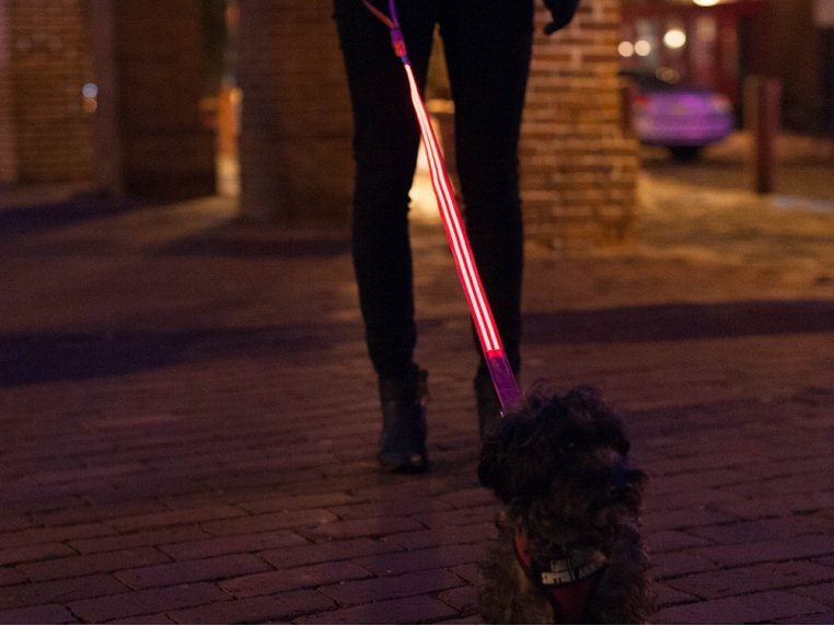 The LED Lite Up Leash by 4id - 2