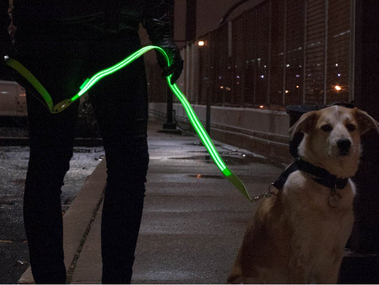 The LED Lite Up Leash by 4id - 1