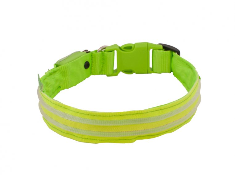 LED Light Up Collar by 4id - 4