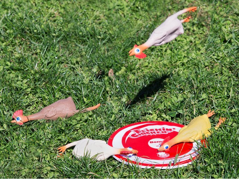Rubber Chicken Target Game by Flickin' Chicken - 1