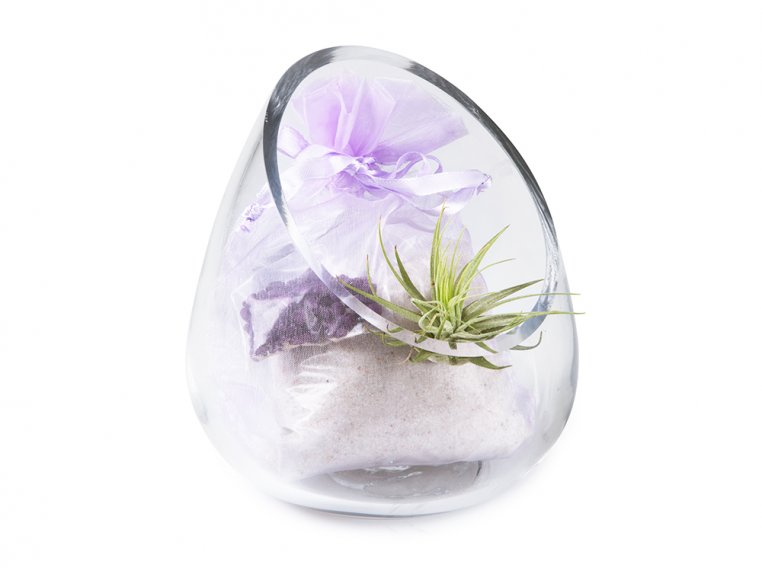 Cut Glass Gem Terrarium by Luludi Living Art - 4
