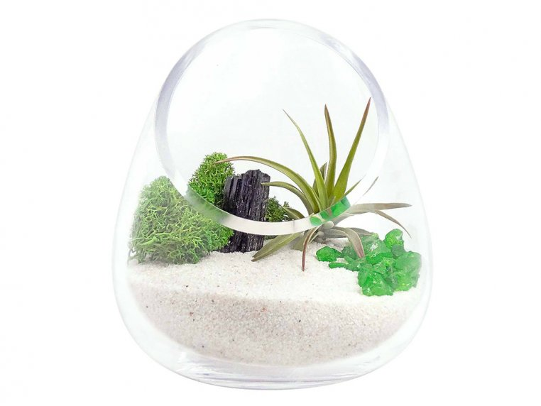 Cut Glass Gem Terrarium by Luludi Living Art - 5