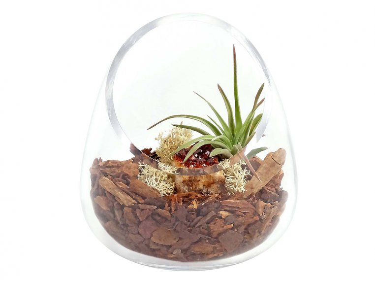 Cut Glass Gem Terrarium by Luludi Living Art - 6