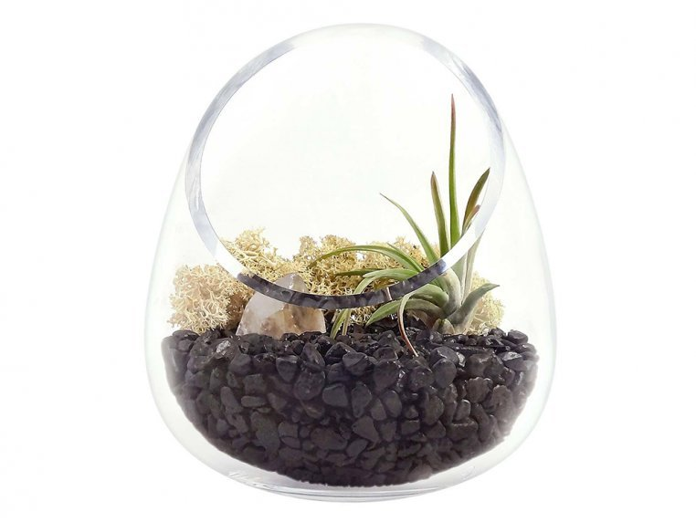 Cut Glass Gem Terrarium by Luludi Living Art - 7