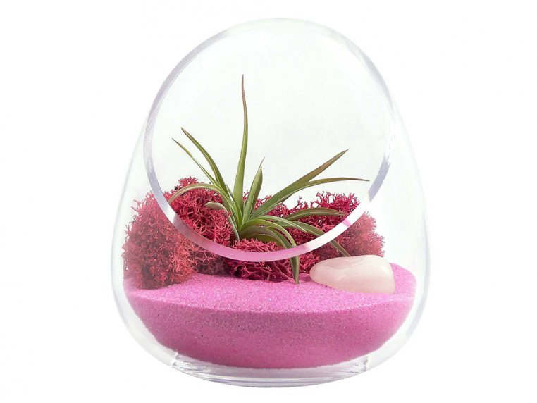 Cut Glass Gem Terrarium by Luludi Living Art - 9