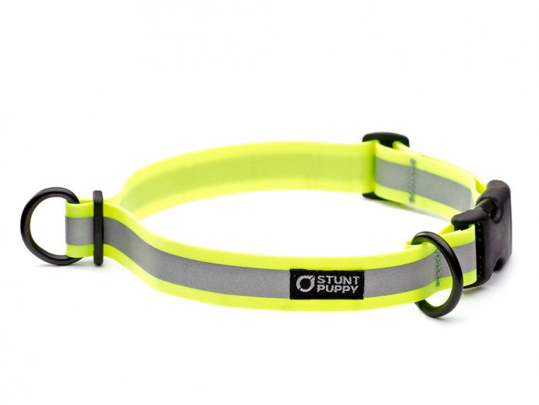 Reflective Dog Collar by Stunt Puppy - 4