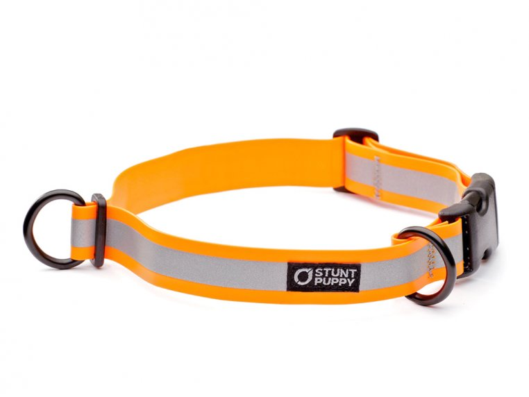 Reflective Dog Collar by Stunt Puppy - 5
