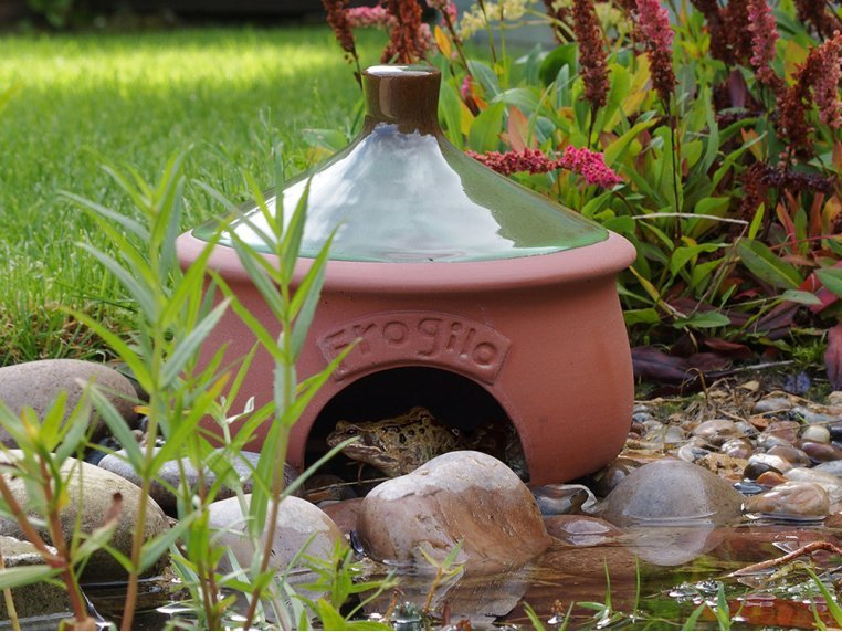 Ceramic Frog & Toad House by Wildlife World - 1