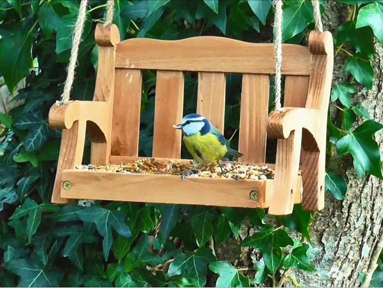 Porch Swing Bird Feeder by Wildlife World - 1