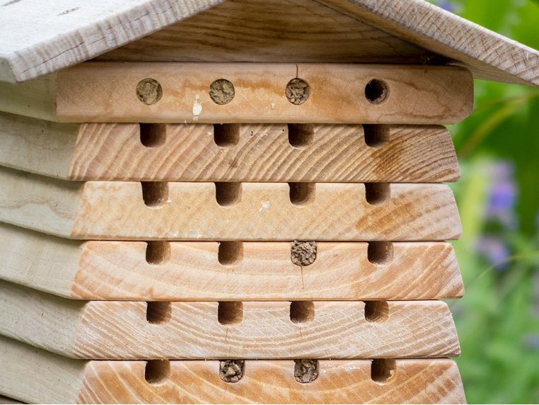 Stacking Solitary Bee Hive by Wildlife World - 3