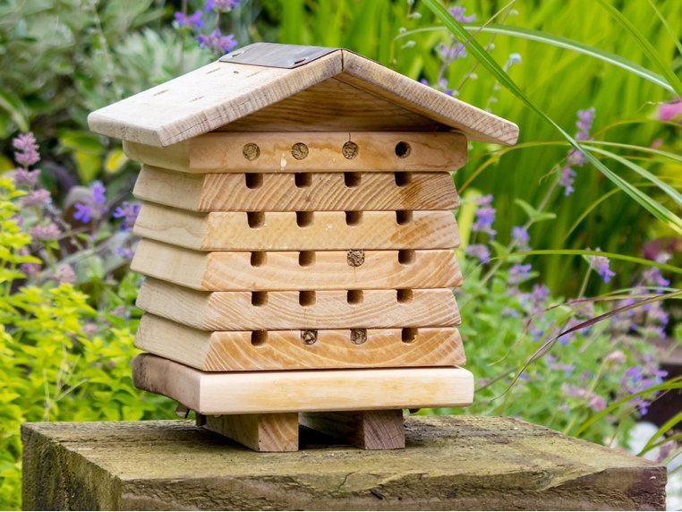 Stacking Solitary Bee Hive by Wildlife World - 1