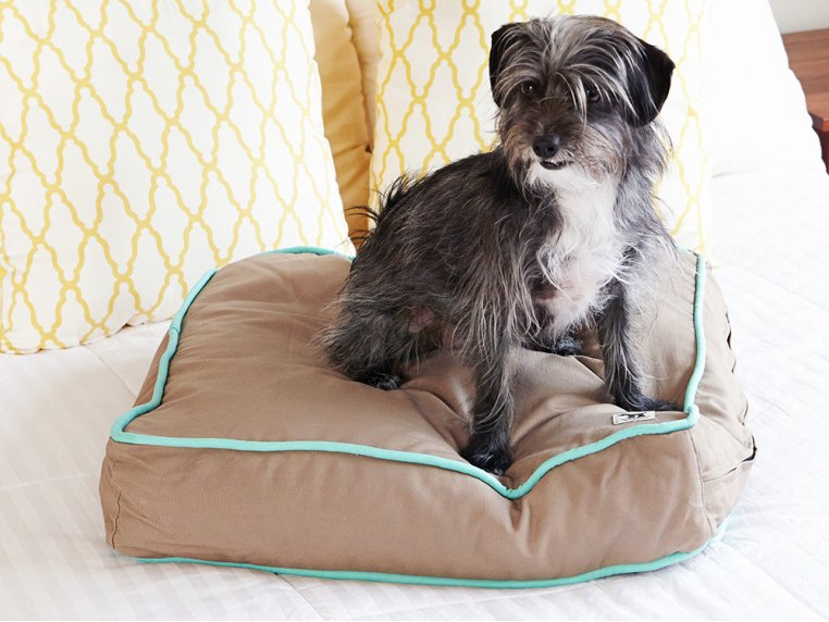 Wild Horses Dog Bed Duvet by Molly Mutt - 1