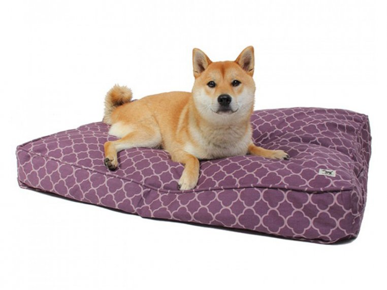 Royals Dog Bed Duvet & Stuff Sack by Molly Mutt - 3