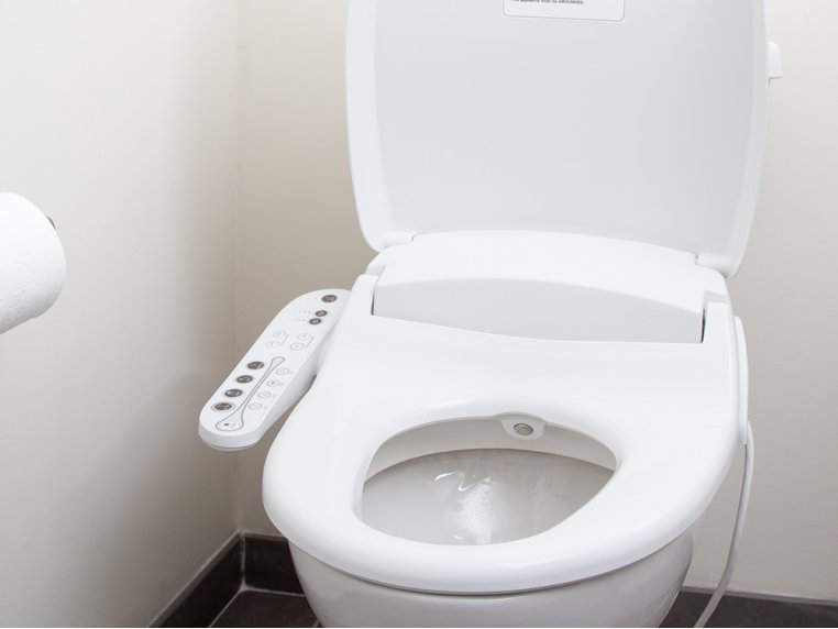 Electric Bidet Toilet Seat By Biobidet The Grommet
