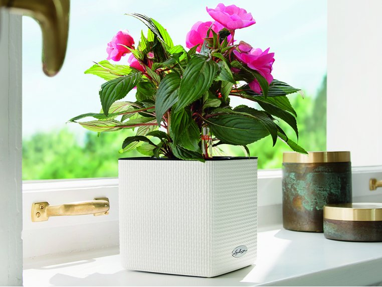 Cube Self-Watering Planter by LECHUZA - 1