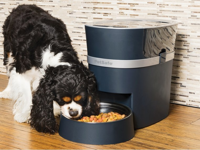 Smart Feed Automatic Pet Feeder by PetSafe® - 1