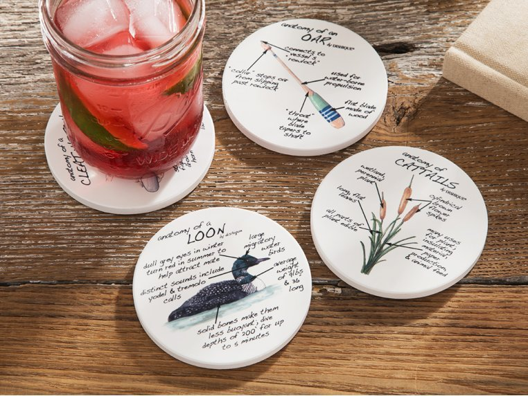 Anatomy Coaster Set, Lifestyle by Dishique - 1