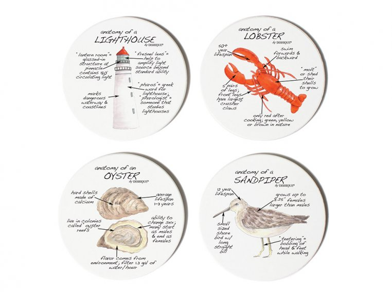 Anatomy Coaster Set, Lifestyle by Dishique - 6