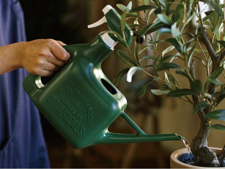 Multipurpose Watering Pot & Sprinkler by Time Concept - 2