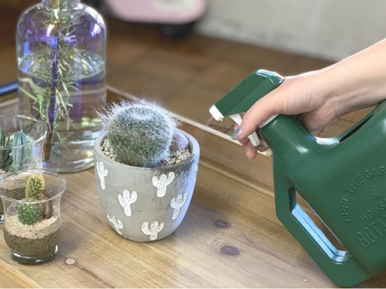 Multipurpose Watering Pot & Sprinkler by Time Concept - 3
