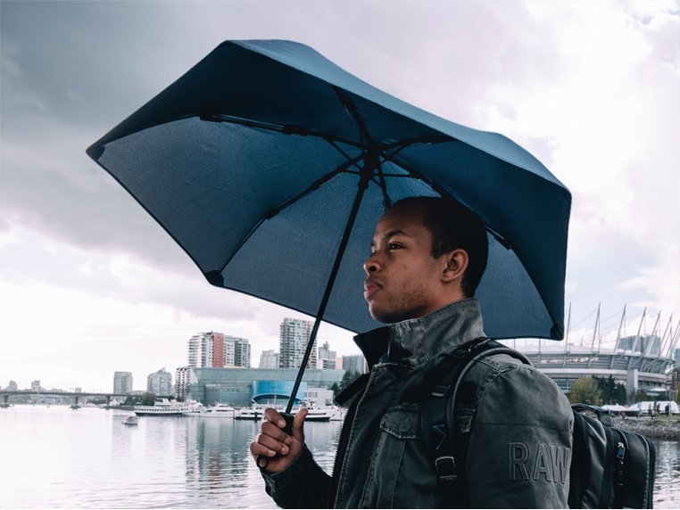 Windproof Carbon Umbrella by Hedgehog Umbrella - 2