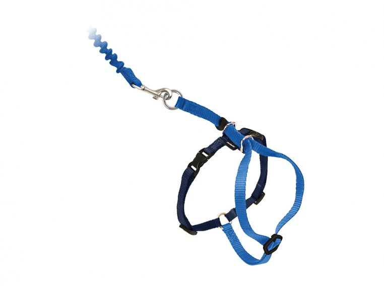Come With Me Kitty™ Harness & Leash by PetSafe® - 6