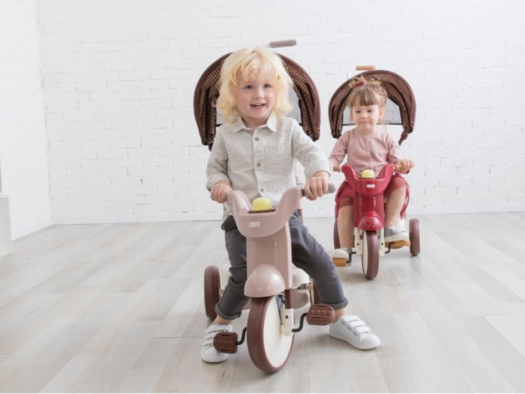 3-in-1 Folding Tricycle with Canopy by iimo USA - 2