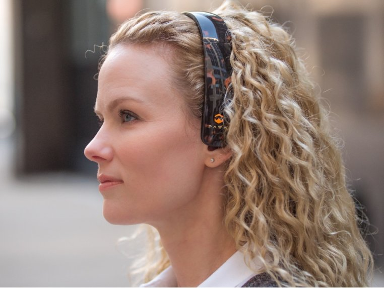 SilkSound Stylish Bluetooth Headphones by Paww - 1