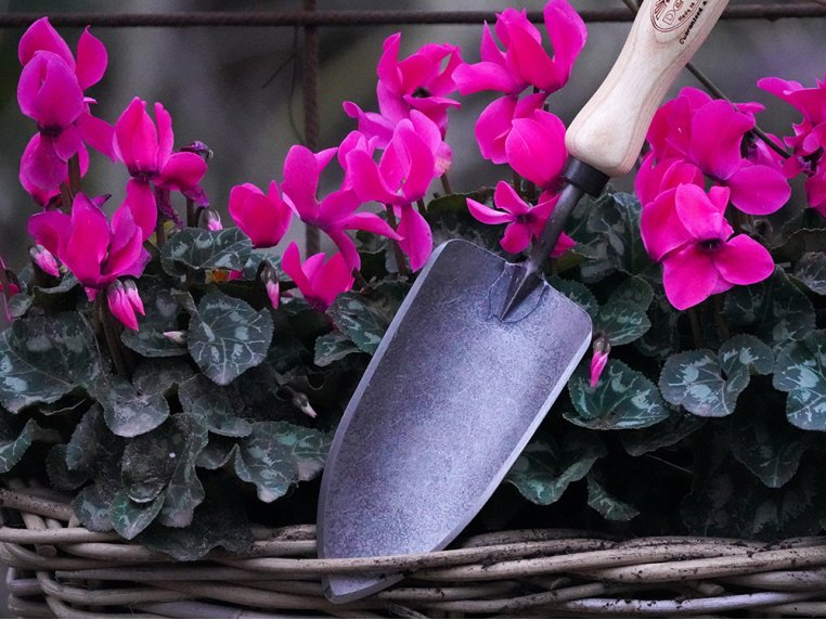 Hand-Forged Gardening Tool by DeWit Garden Tools - 2