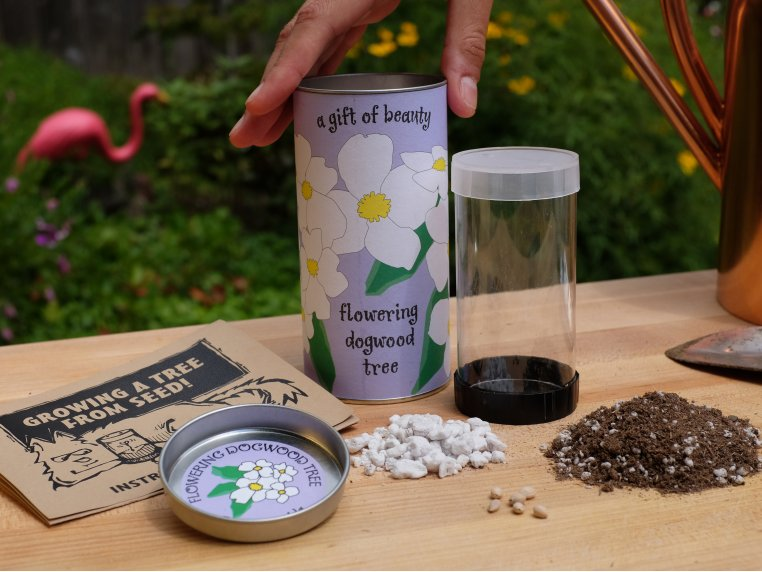 Seed Starter Kit by The Jonsteen Company - 1