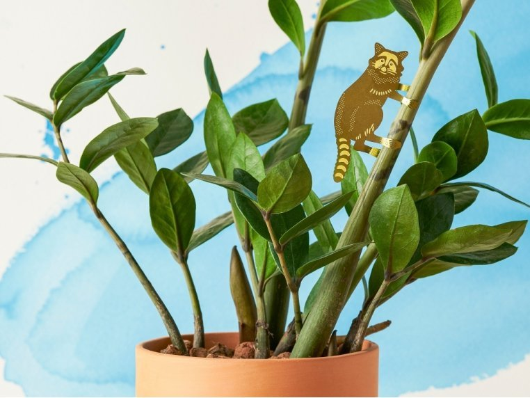 Decorative Plant Animal Sets by Another Studio - 3