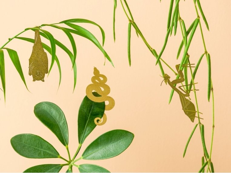Decorative Plant Animal Sets by Another Studio - 2
