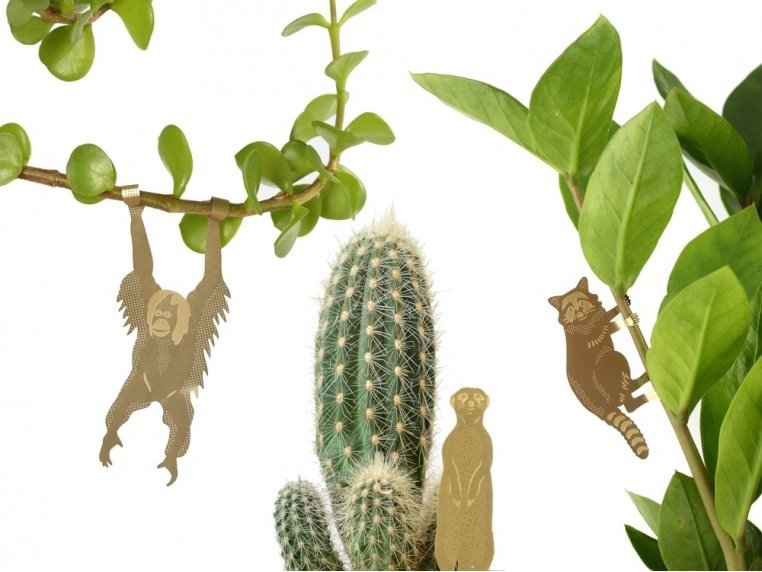 Decorative Plant Animal Sets by Another Studio - 1