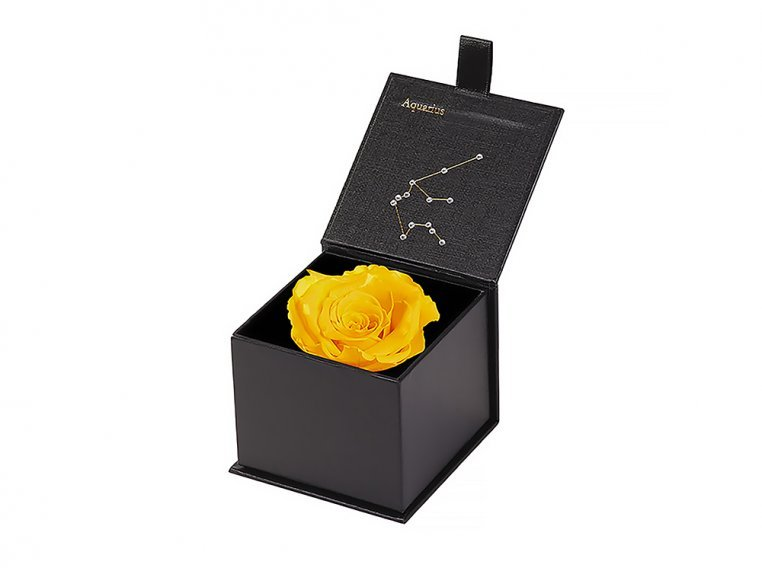 Preserved Rose Zodiac Gift Box by Eternal Roses® - 6