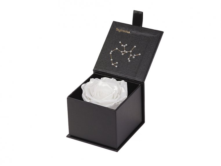 Preserved Rose Zodiac Gift Box by Eternal Roses® - 37