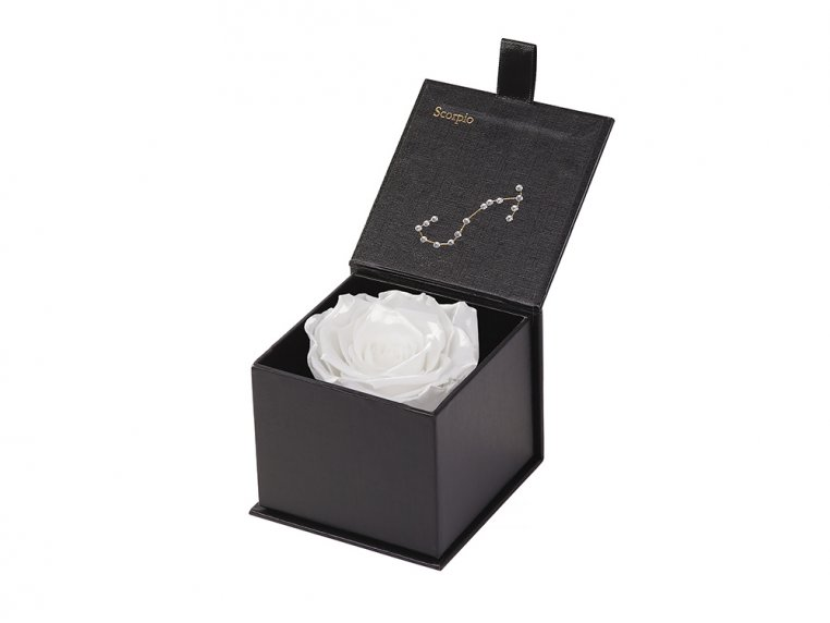 Preserved Rose Zodiac Gift Box by Eternal Roses® - 42