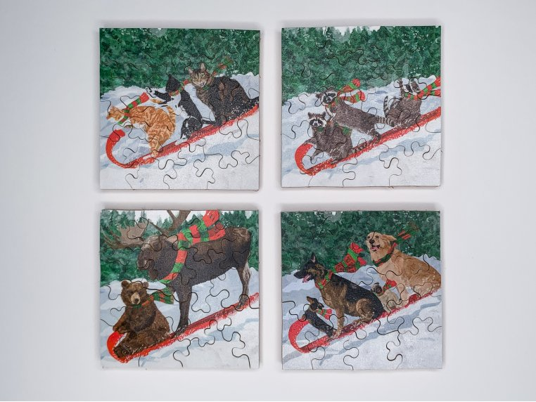 4-Pack Themed Pocket Puzzles by The Waterford Puzzle Company - 2