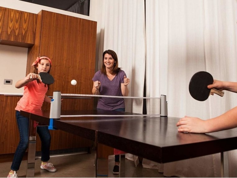 Retractable Table Tennis Net Set by PingPongly™ - 1
