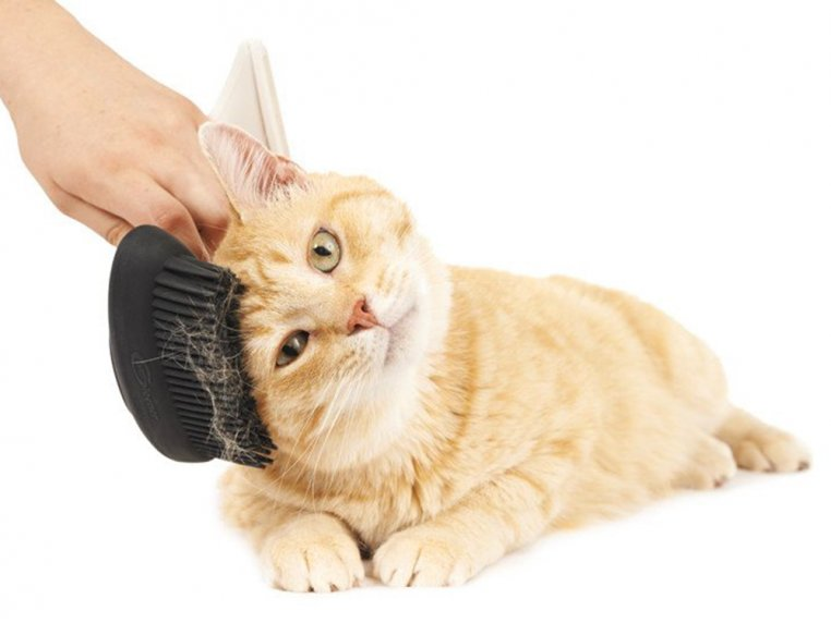 Fuzz Remover & FURniture Brush by Gleener - 11