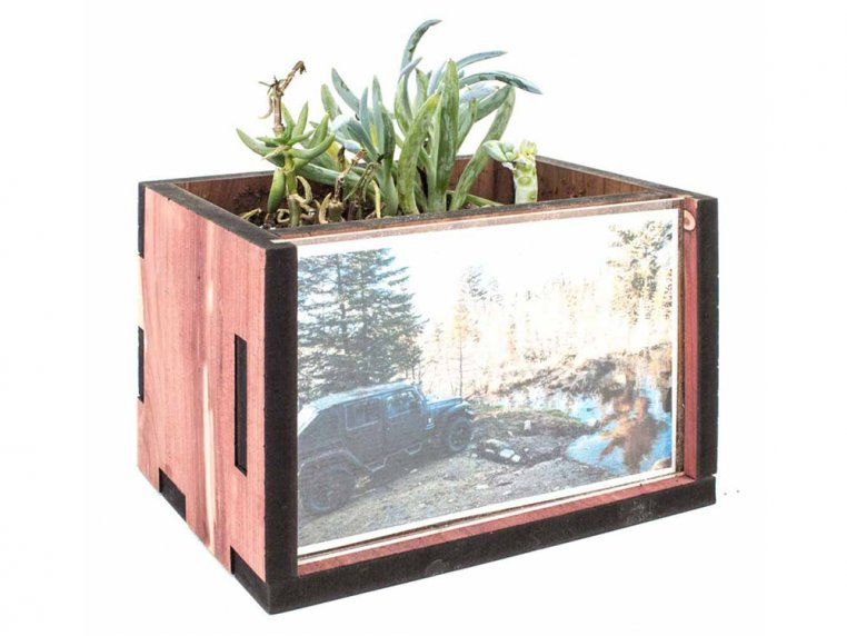 Wooden Picture Frame Desktop Planter by Woodchuck USA - 1