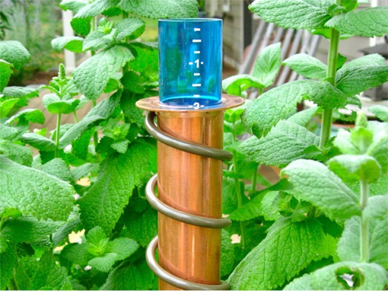 "24"" Stake Rain Gauge by World's Coolest - 1"