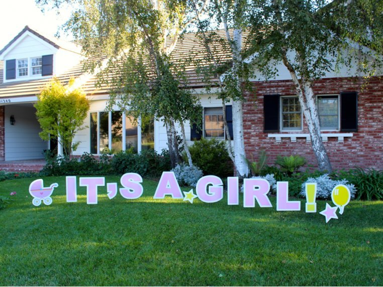 Statement Yard Sign - It's A Girl by My Yard Card - 4