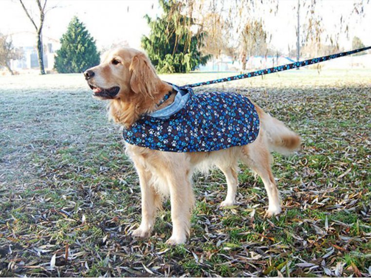 Packable Rain Poncho by RC Pets - 5