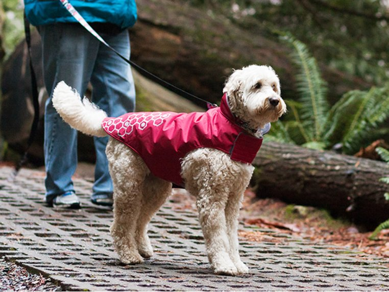 Reflective Fleece-Lined Outerwear by RC Pets - 2