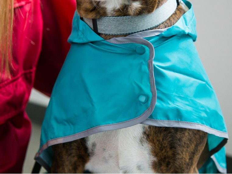 Packable Rain Poncho by RC Pets - 2
