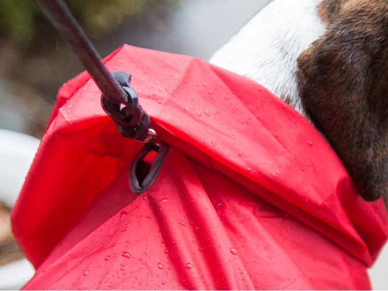 Packable Rain Poncho by RC Pets - 3