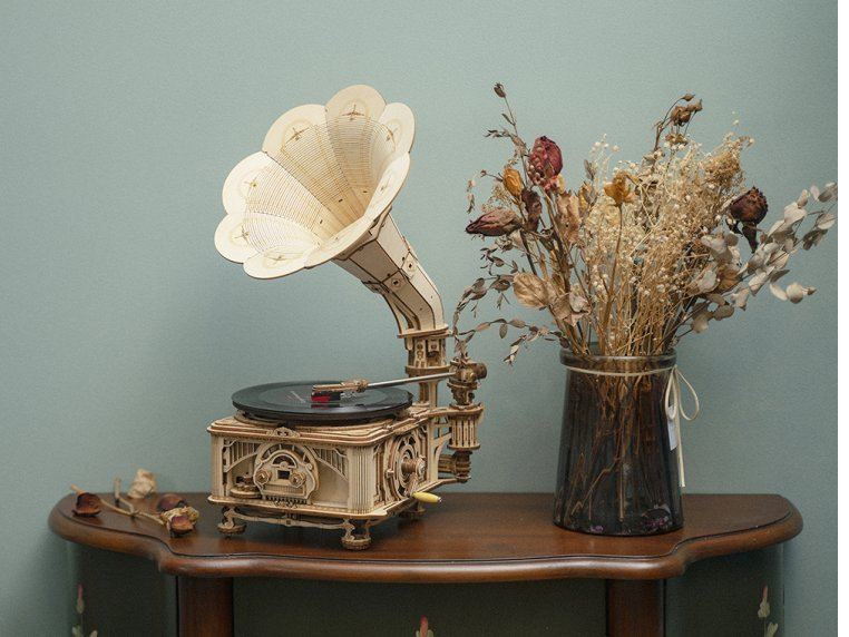 DIY Vintage Record Player by Robotime - 2