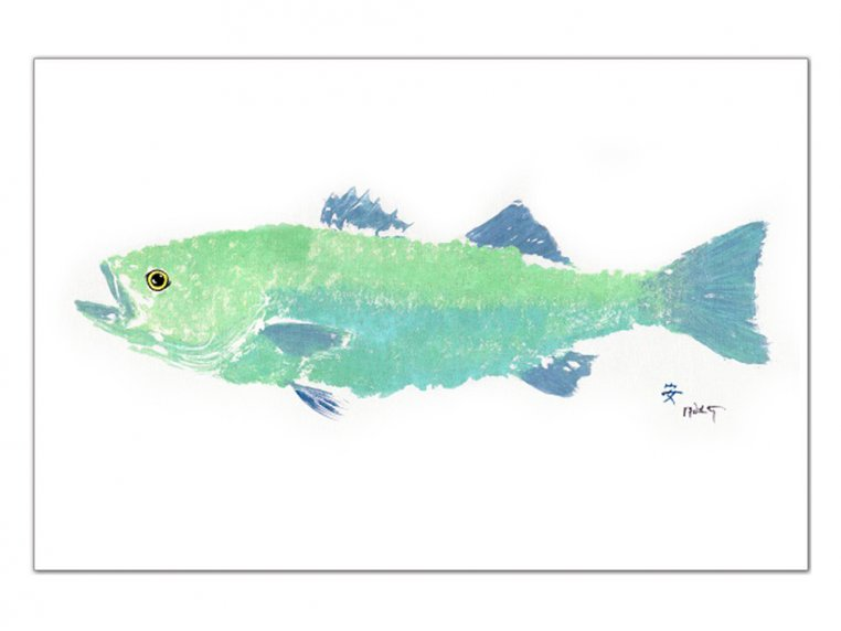 Fish-Rubbing Placemats - Set of 4 by Fish Aye Trading - 11