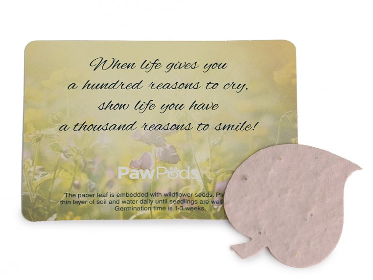 Smaller Pet Burial Pods by Paw Pods - 7