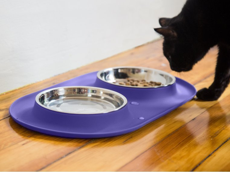 Cat/Tea Cup Dog Double Feeder Bowl by Messy Mutts - 1